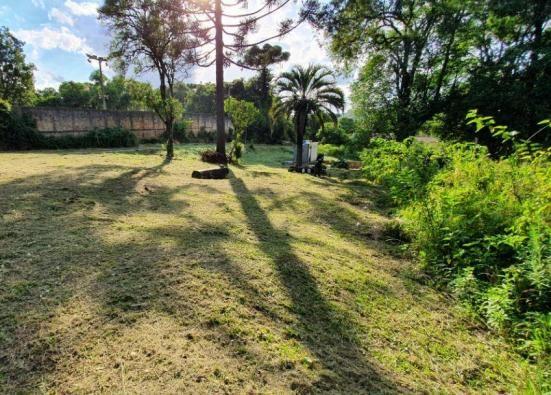 Chácara à venda, 1242 m² - Colônia Antônio Prado - Almirante Tamandaré - Foto 4