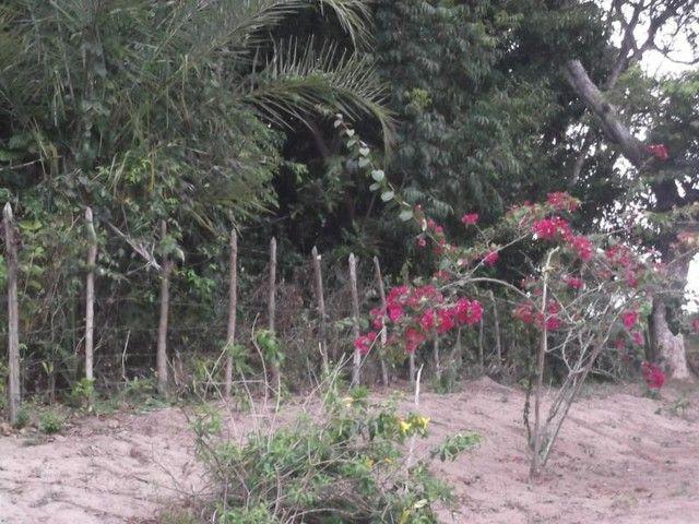 Terreno para Venda em Mata de São João, Acú da Torre - Foto 10