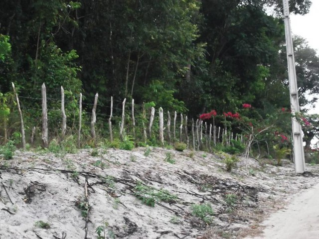 Terreno para Venda em Mata de São João, Acú da Torre - Foto 13