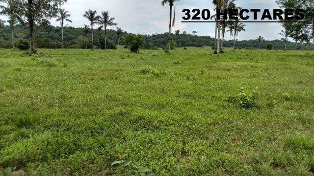 Fazenda com 320 hectares a venda na Zona Rural de Porto Velho/RO