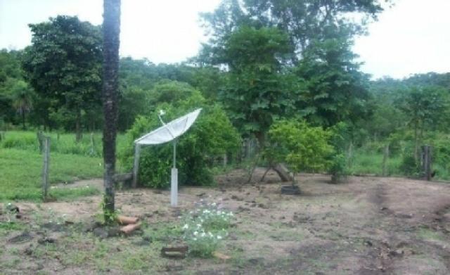 Venda de uma Fazenda- 25 alqueires (1.210,000 M²) - Arenópolis-GO - Foto 8
