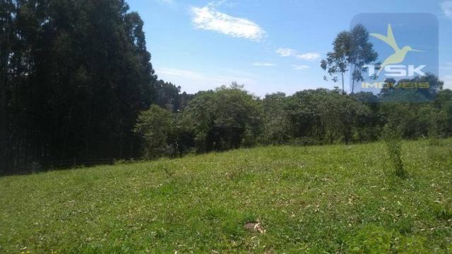 Fa0009 fazenda à venda, 605000 m² por r$ 3.150.000 - zona rural - quitandinha/pr - Foto 16