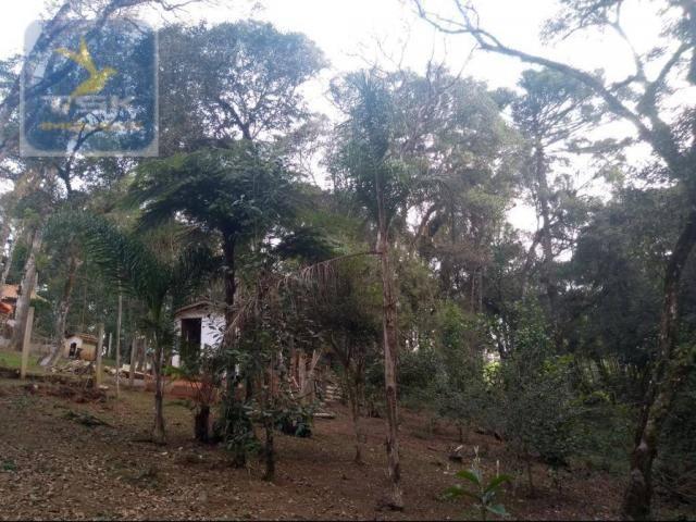 Ch0308 - mandirituba chácara 10.000 m² antes do pedágio com ótima casa - Foto 13