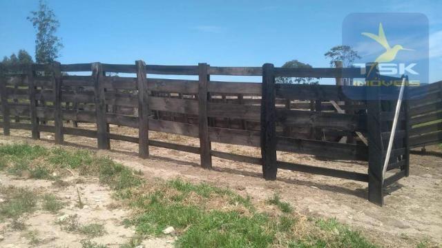 Fa0009 fazenda à venda, 605000 m² por r$ 3.150.000 - zona rural - quitandinha/pr - Foto 9