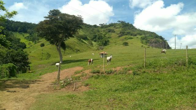Excelente propriedade em Cantagalo!!! - Foto 11