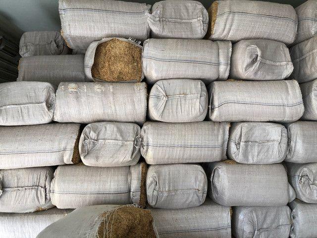 Palha de arroz  - Foto 2