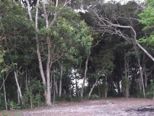 Terreno para Venda em Mata de São João, Acú da Torre - Foto 9