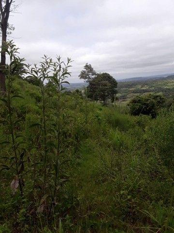 Chácara 25 hectares em Porto Lucena RS. - Foto 15