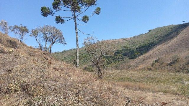 Terreno Com Cachoeira!!  - Foto 10