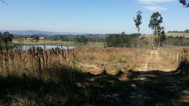 Condomínio de chácaras em Sapiranga - Vivendas do Campo - Foto 4