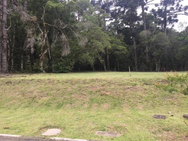 Terreno à venda, 680 m² por r$ 618.338,53 - centro - canela/rs - Foto 8