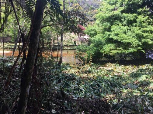 Terreno à venda, 653 m² por r$ 210.000,00 - comary - teresópolis/rj - Foto 7