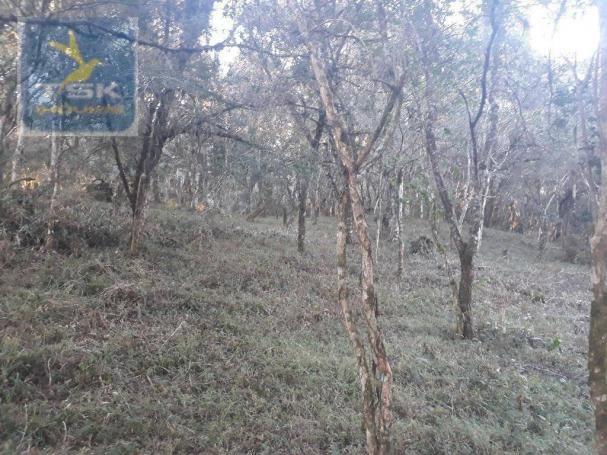 CH0300 - Chácara Agudos do Sul 12.100 m² 3 km da cidade - Foto 7