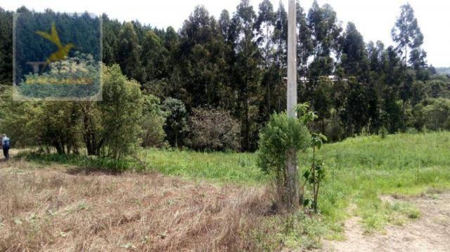 CH0314 Mandirituba 4.200 m² de área p/ Chácara com tanque luz 300 m asfalto - Foto 3