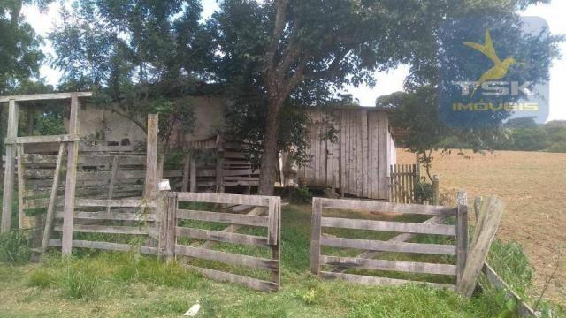 CH0329 - Quitandinha 5 Alq. Chácara 2 Km do asfalto 3,5 km da Cidade - Foto 18