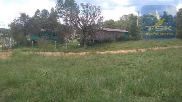 CH0329 - Quitandinha 5 Alq. Chácara 2 Km do asfalto 3,5 km da Cidade - Foto 16