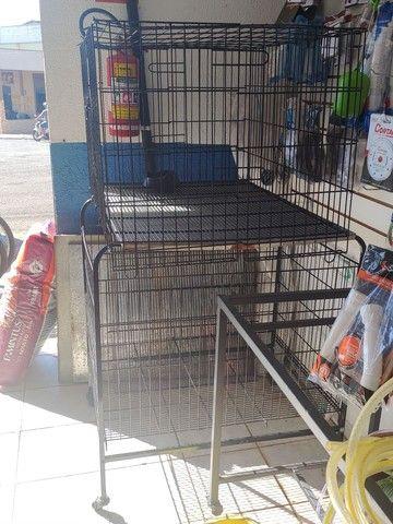 Berçário para pet shop