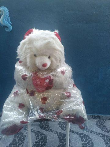 Urso muito grande - Foto 3