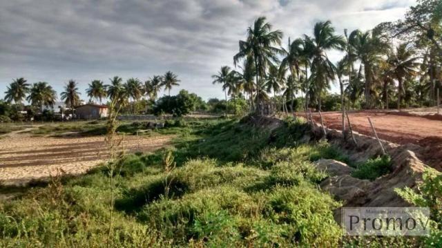 Terreno residencial à venda, Mosqueiro, Aracaju. - Foto 3