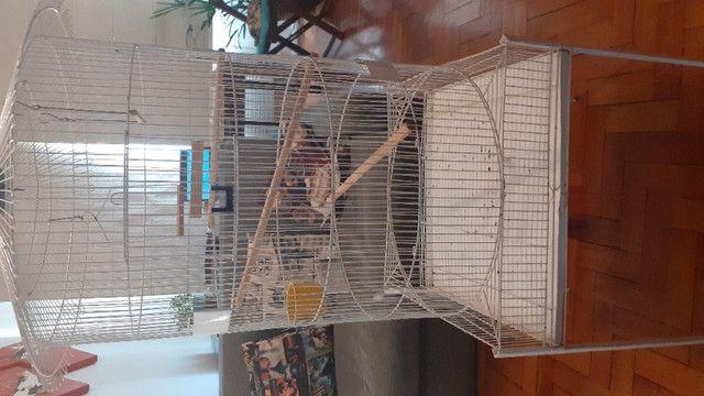 Mini viveiro gaiola - Foto 4