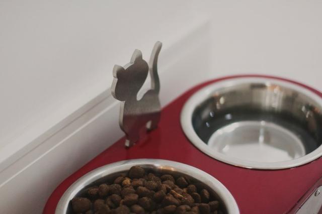Comedouro para Gatos - Vermelho - Foto 4