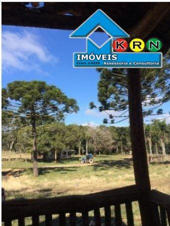 Fazenda - Fazenda a Venda no bairro Área Rural de Ponta Grossa - Ponta Grossa, P... - Foto 11