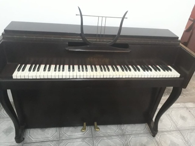 ShowRoom C/ Pianos Samick -Suzuki - Yamaha - Zietter - Steinway & Outros CasaDePianos - Foto 6