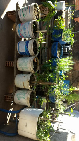 Terra vegetal adubada e com esterco25 kilos  $10,00  - Foto 3
