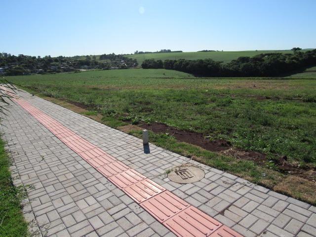 Terreno para Morar Bem - Foto 7