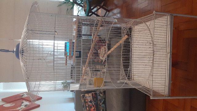 Mini viveiro gaiola