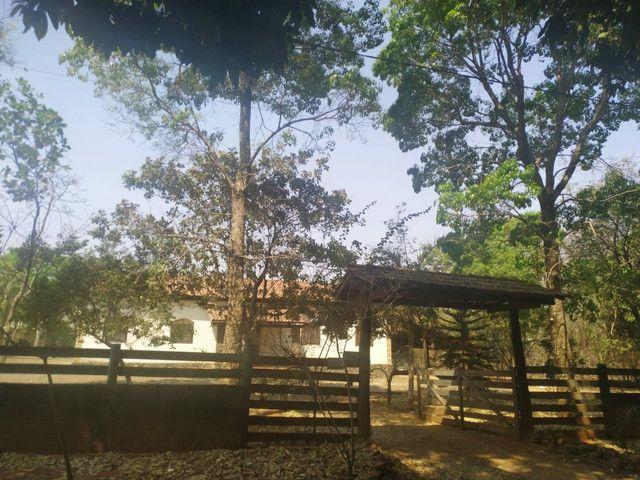 Chacara na cidade de Jaraguá 2.412 mets - Foto 9
