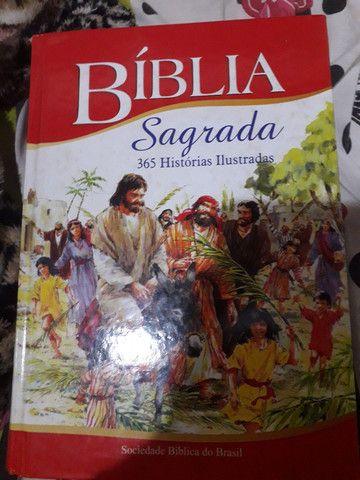 Biblia Sagrada Ilustrada 365 Histórias