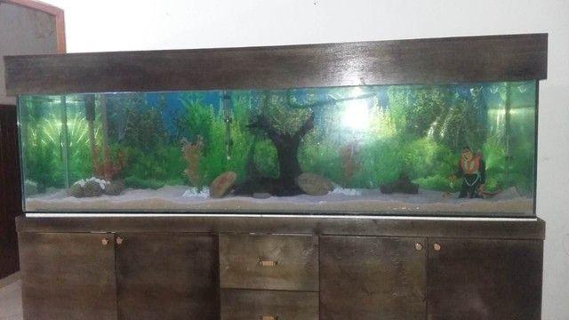 Aquário de 2 metros - Foto 3