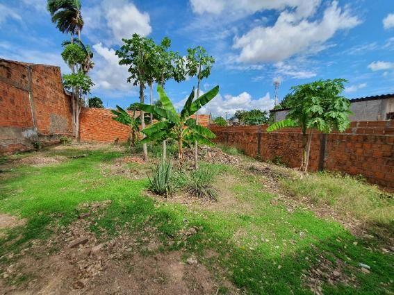 Casa à venda com 2 dormitórios em Jardim das flores, Varzea grande cod:24138 - Foto 5