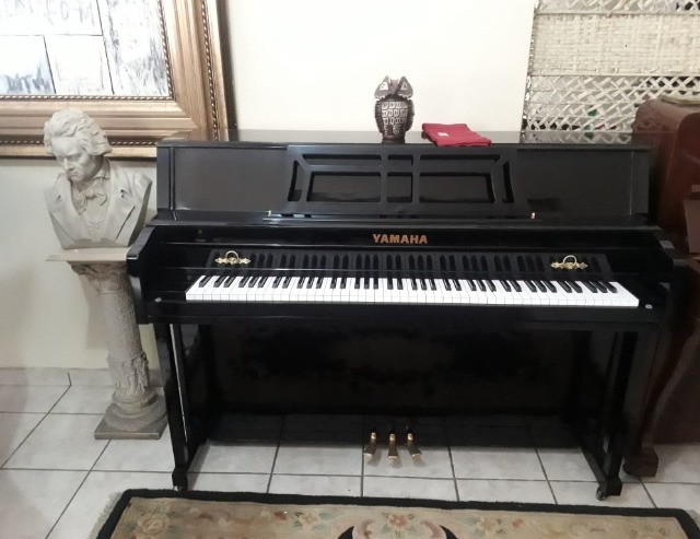 ShowRoom C/ Pianos Samick -Suzuki - Yamaha - Zietter - Steinway & Outros CasaDePianos - Foto 2
