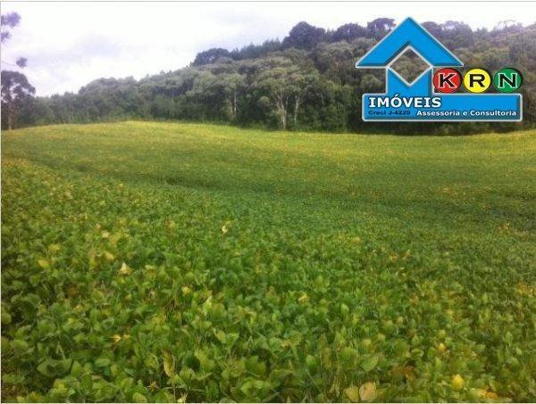 Fazenda - Fazenda a Venda no bairro Área Rural de Ponta Grossa - Ponta Grossa, P... - Foto 8