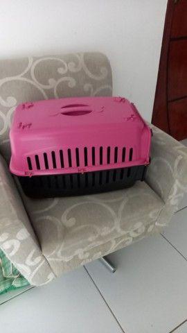 Caixa transporte N°2 para Cães e Gatos - Foto 2