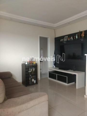 Apartamento à venda com 2 dormitórios em Serrano, Belo horizonte cod:658535 - Foto 6