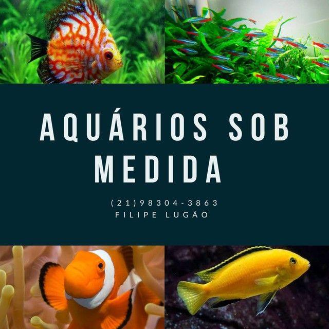 Aquarios sob medida com preço especial.