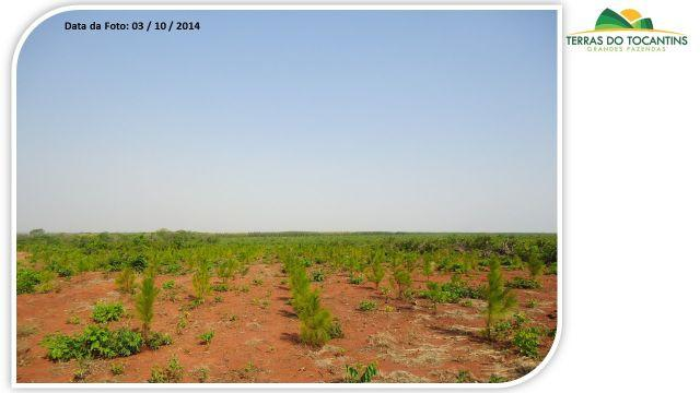 Fazenda 1.089 Hectares - Terra Ve