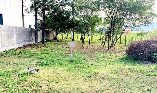Belo Lote no Campeche à 300 mts. da Av. Pequeno Príncipe