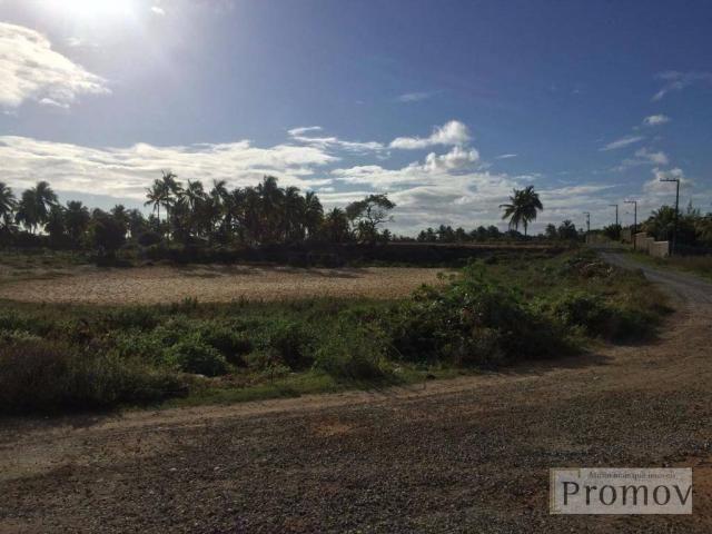 Terreno residencial à venda, Mosqueiro, Aracaju. - Foto 6