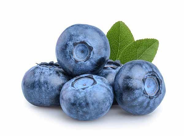 Mirtilo Blueberry bandeja 100g