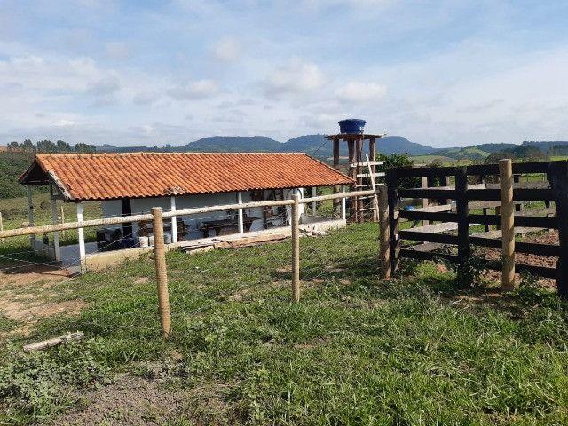 Sitio em monte santo de minas 13 alqueires 1.299.000.00 - Foto 10