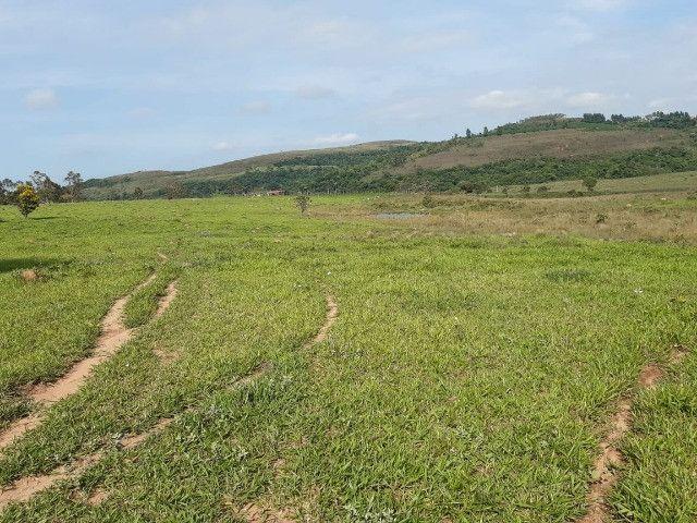 Sitio em monte santo de minas 13 alqueires 1.299.000.00 - Foto 18