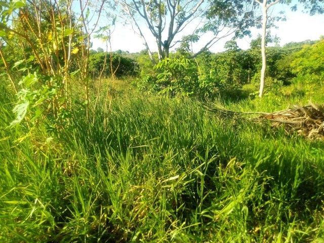 TERRENO RESIDENCIAL em Mata de São João - BA, Malhadas - Foto 3