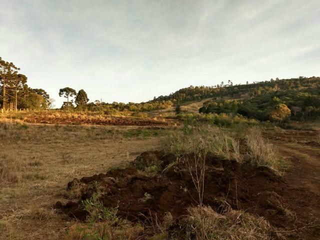 Fazenda para plantio - Foto 15