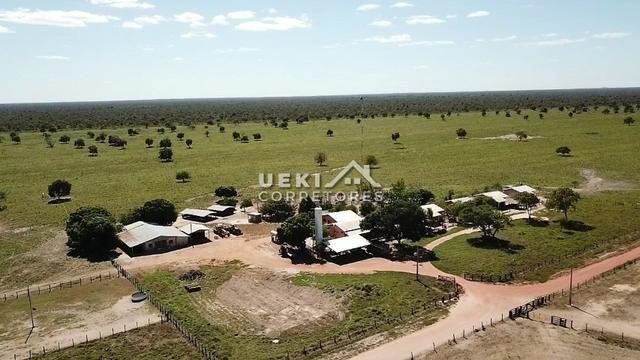 Área rural 47.000 ha - Dupla Aptidão