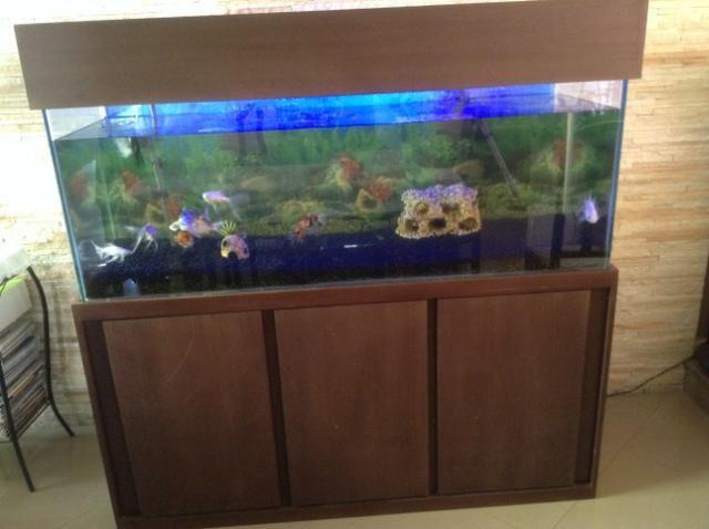 Vendo ou Troco Aquário Completo 450 litros. não tenho espaço para o aquário. - Foto 3