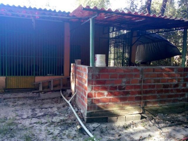 Chácara rural à venda, Zona Rural, Nova Crixás. - Foto 8